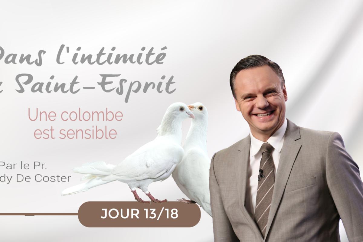 Jour 13: Une colombe est sensible