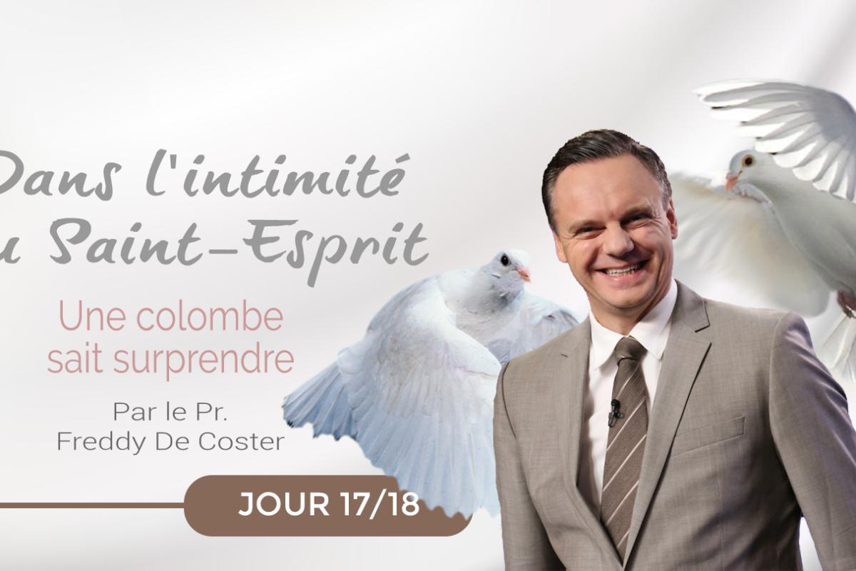 Jour 17: Une colombe sait surprendre